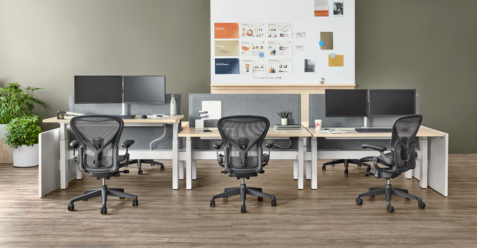 Herman Miller Aeron chairs empty in an office continental office