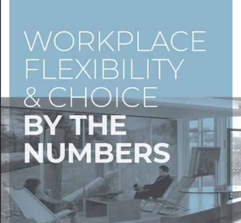 flexibility report-1