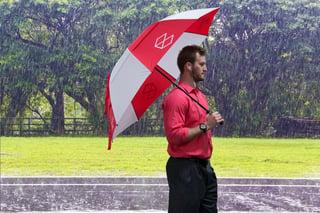 umbrella - small.jpg